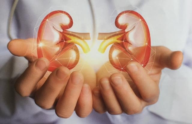 Peritoneale dialyse in de thuiszorg