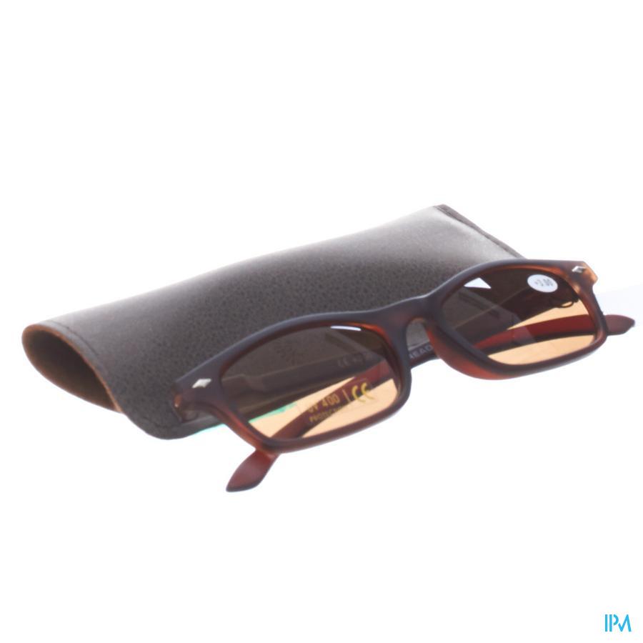 Leesbril voor zon Sunreader Bruin +3,00