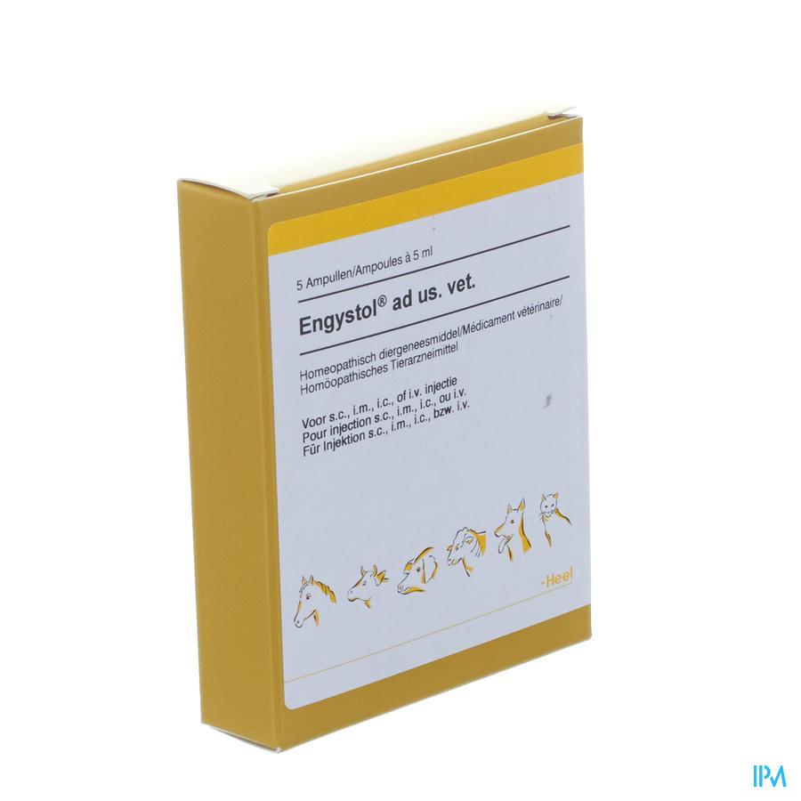 Engystol N 5ml / 5 ampullen