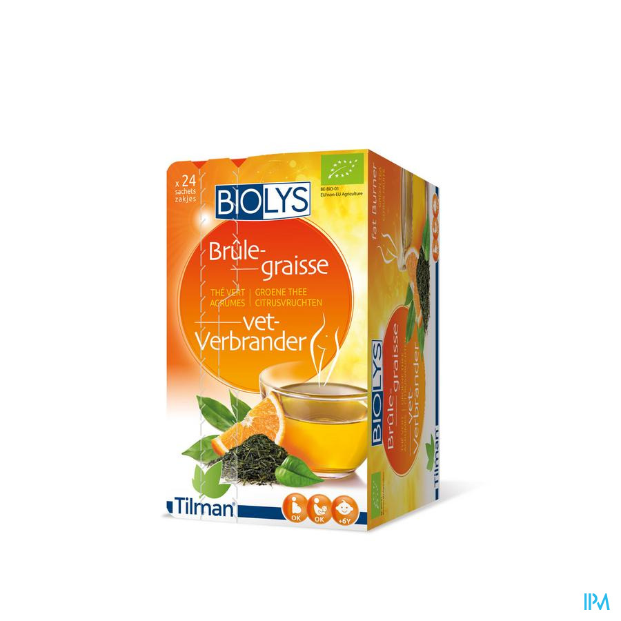 Biolys Groene Thee Citroenvruchten  (24 zakjes)